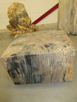 Beistelltisch Fossiles Holz C37