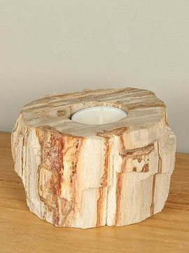 Windlicht Fossiles Holz nr. 20